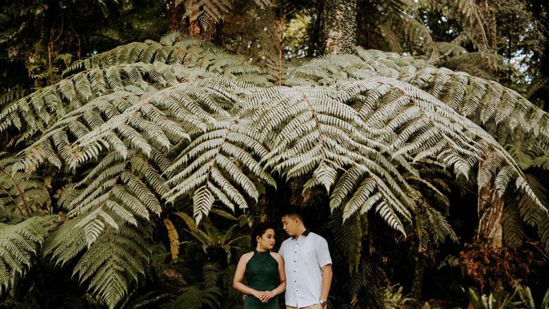 Bedugul Forest Elopement