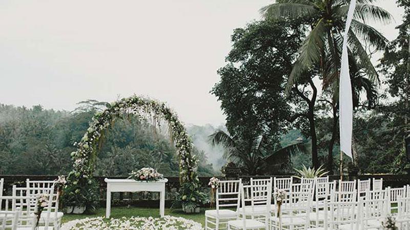 Ubud Forest